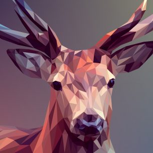 Digital Graphic Design/Art
