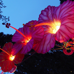 Lighting Creative Lanterns