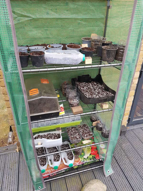 Seed Growing Containers