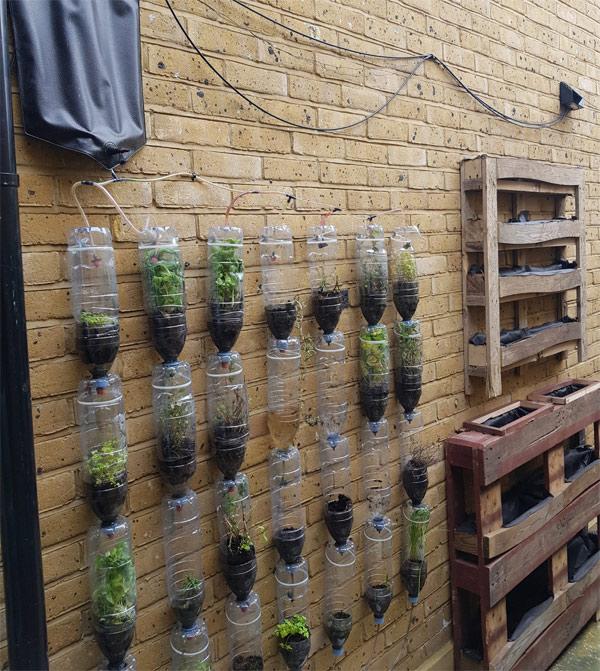 Vertical Pallet Planters