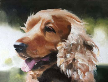 Popular Animal Portrait Artist from £89