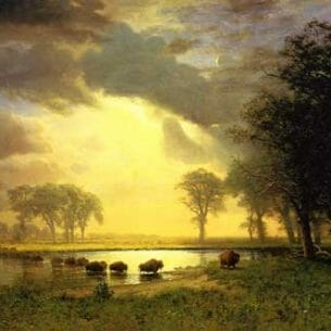 Bierstadt, Albert(USA) – The Buffalo Trail Oil Painting Reproductions
