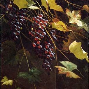 Andrew J. H. Way – Wild Grapes Oil Painting Reproductions