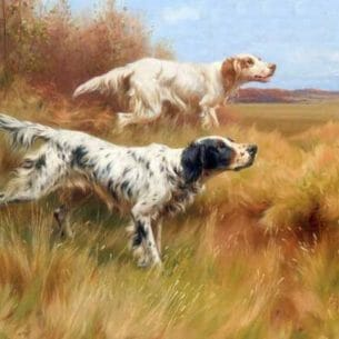 Blinks, Thomas(UK): English Setters On Point Oil Painting Reproductions