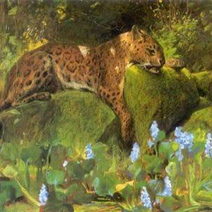 Arthur Wardle – Resting Jaguar Oil Painting Reproductions