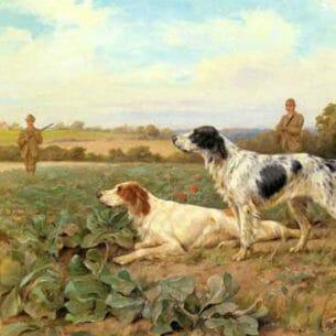 Blinks, Thomas(UK): In The Field, Shooting