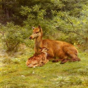 Bonheur, Rosa Maria(France): Doe And Fawn In A Thicket Oil Painting Reproductions