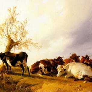 Cooper, Thomas Sidney(UK): Dairy Cows Resting