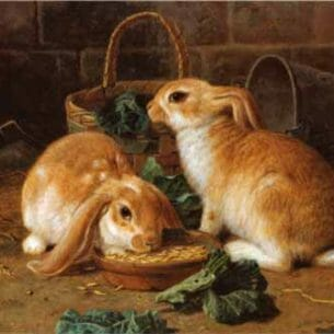 Alfred Barber – Bunnies' Meal I