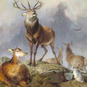 Edwin Henry Landseer – Scene in Braemar- Highland Deer Oil Painting Reproductions