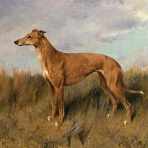 Arthur Wardle – Henrietta Horn Oil Painting Reproductions