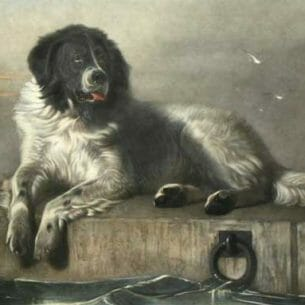 Edwin Henry Landseer – Distinguished Member of the Humane Society Oil Painting Reproductions