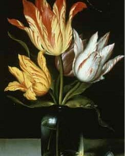 Bosschaert, Ambrosius the Elder – Tulips in a Glass Vase Oil Painting Reproductions