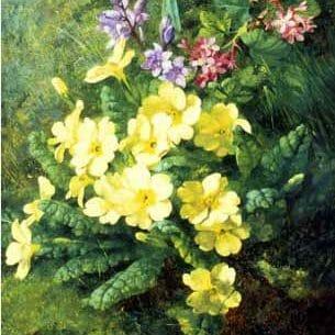 Annie Mutrie – Spring Flowers